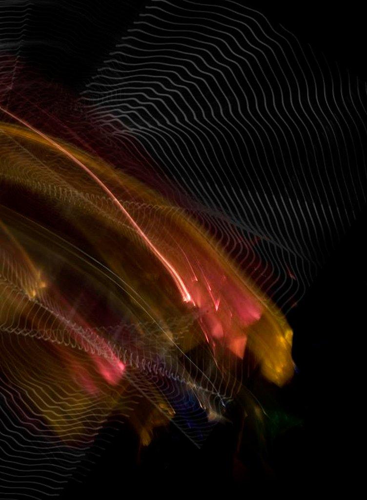 huella-2.jpg